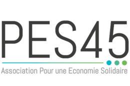 Logo PES 45